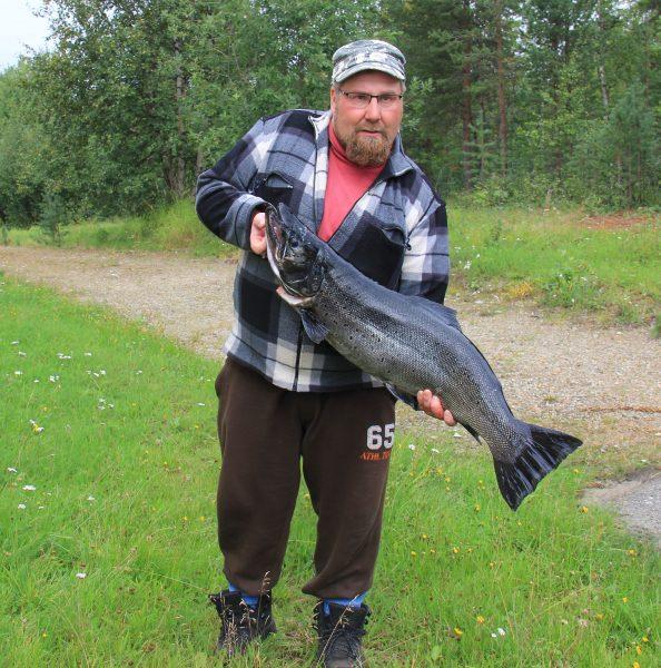 Inarijärvestä rasvaeväleikattu taimen 10,420 kg. Kuva: Ari Savikko