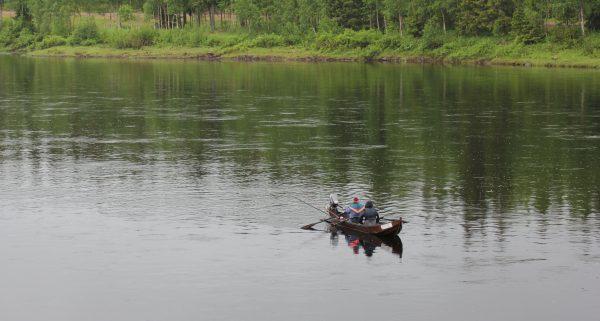 Lohen soutajia Muoniojoella. Kuva: Ari Savikko