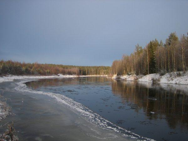 Talvista Iijokea. Kuva: Vesa Määttä