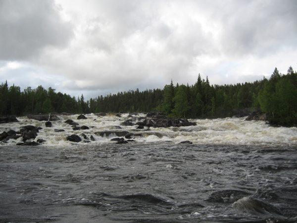 Kuva: Vesa Määttä